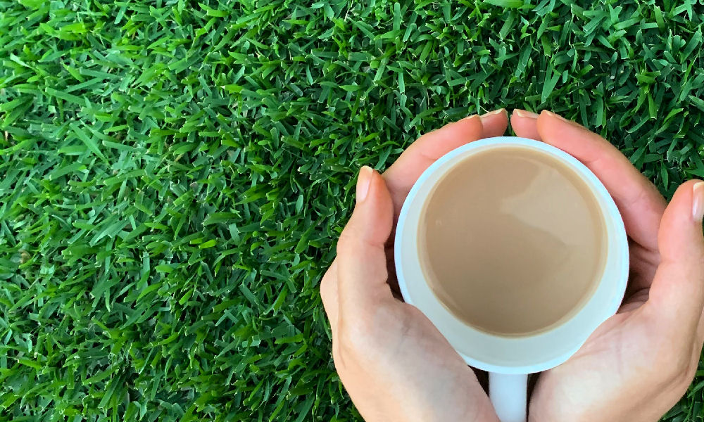Cup of Tea Picture
